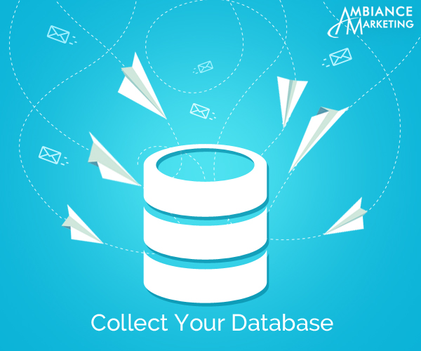 Collect Your Database